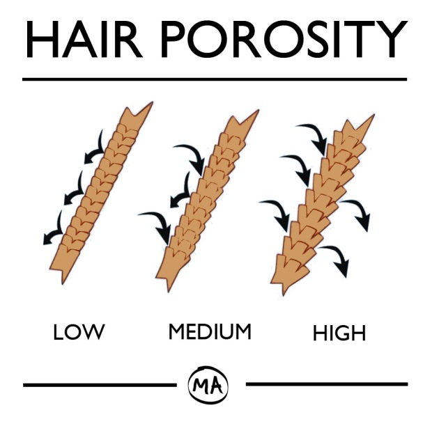 HAIR-POROSITY-CHART