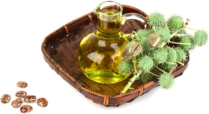 Should-Use-Castor-Oil-1.jpg